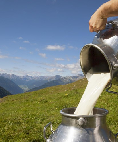 milch-alm-mg-wiese